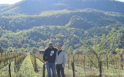 A Business and Wine Trip to Georgia!